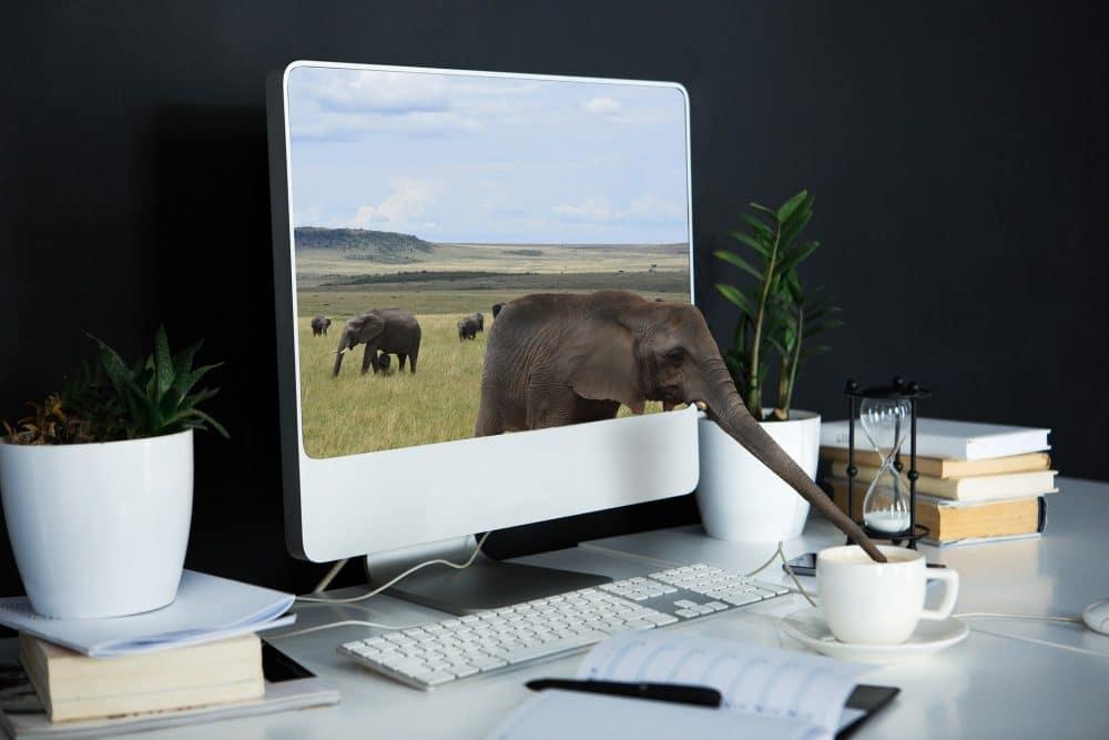 IT Partner für Webdesign Agentur Webagentur & Leasingrückläufer gebrauchte Hardwar Remarketing used Notebooks Laptops Server PCs